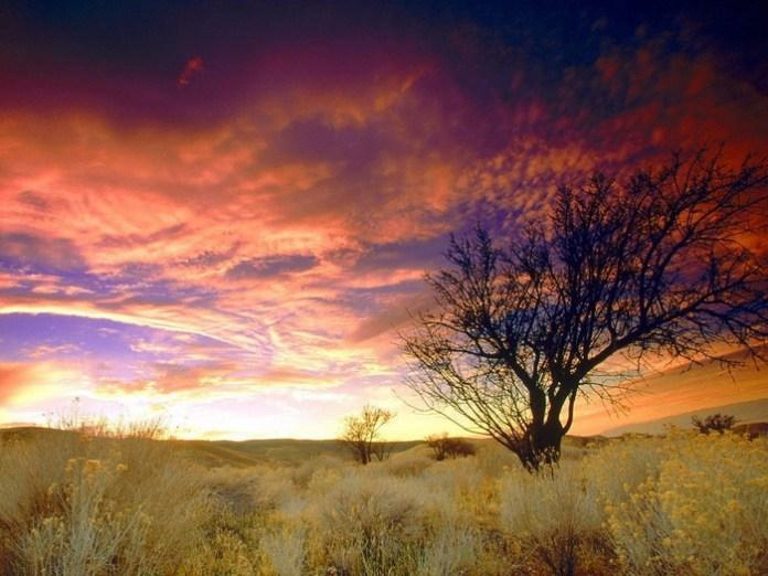 colorful-sky-17-photos- (4)