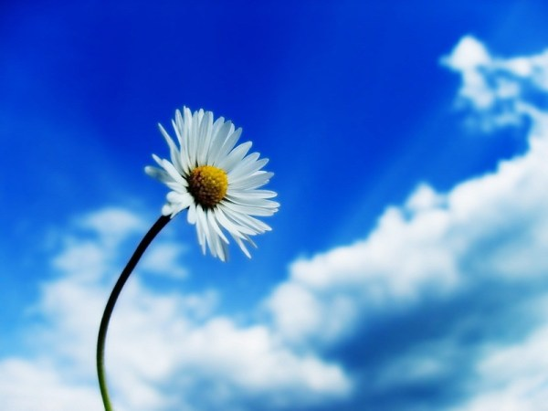 life-in-blue- (7)