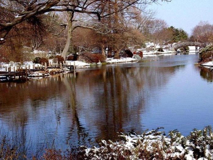 snow-in-autumn- (7)