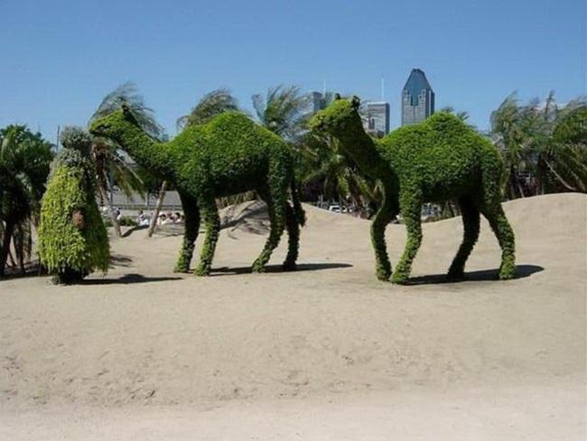 topiary-animals- (12)
