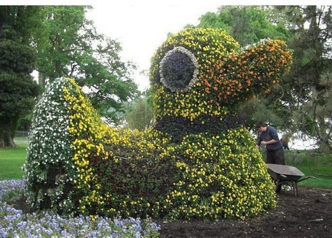 topiary-animals- (13)