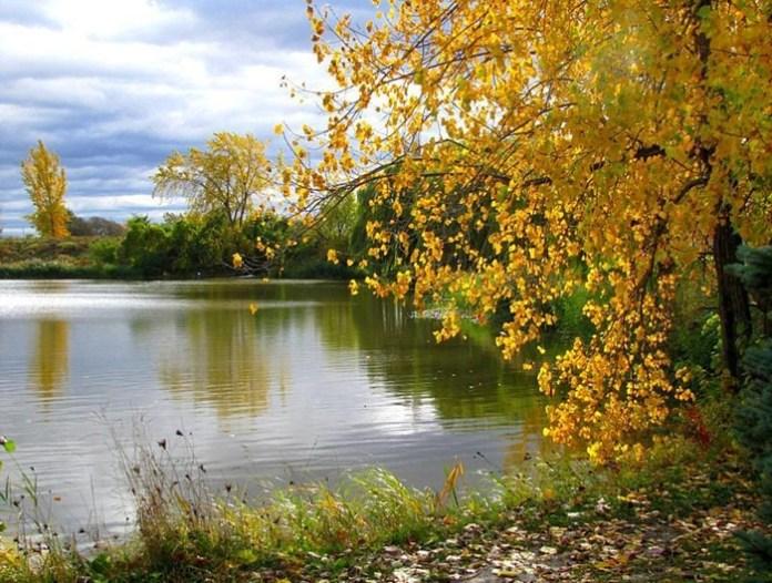 beauty-of-autumn- (2)