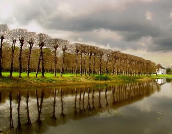 lake-reflection-26-photos- (16)