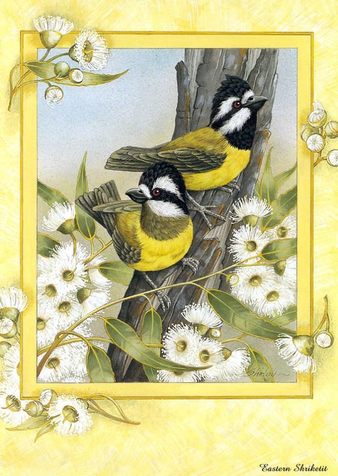 beautiful-birds-paintings- (6)