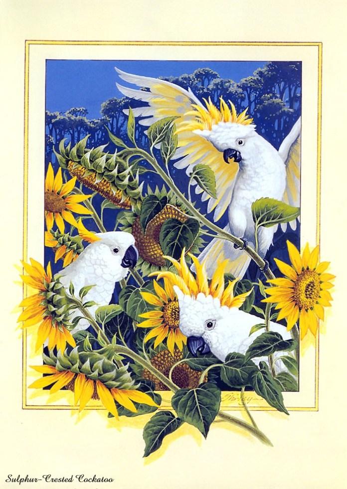 beautiful-birds-paintings- (10)