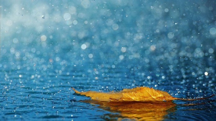 beautiful-rain-pictures-45-photos- (14)