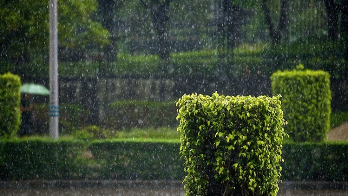 beautiful-rain-pictures-45-photos- (15)