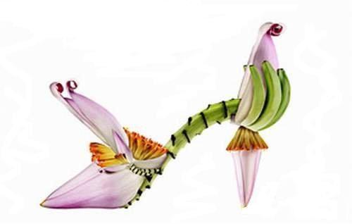 flower-shoe- (5)
