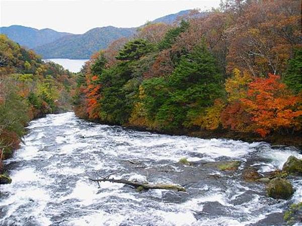 autumn-in-japan- (3)