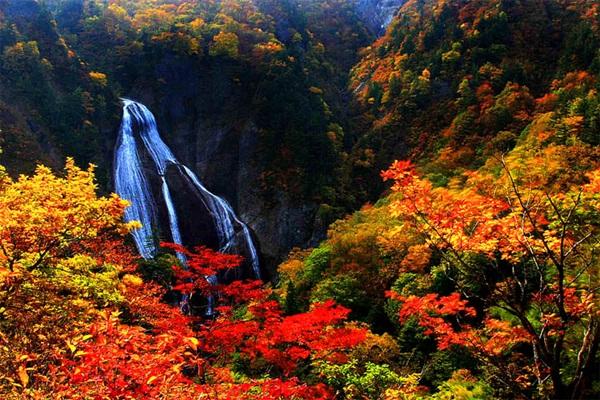 autumn-in-japan- (13)