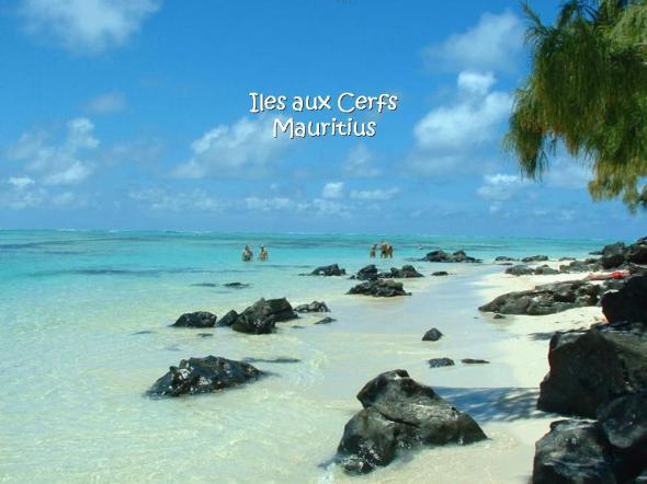 beautiful-beaches-around-the-world-26-photos- (14)
