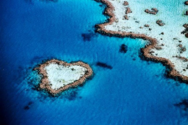 hearts-in-nature- (10)