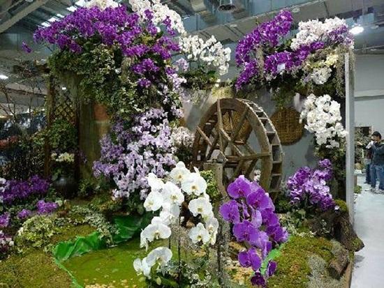 taipei-flora-exposition- (7)
