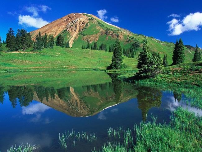 beautiful-green-nature- (10)
