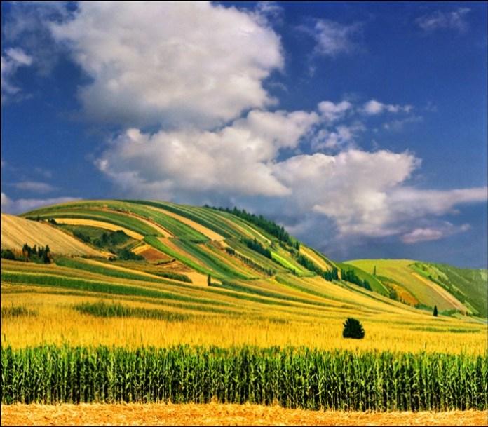 beautiful-landscape-photos- (5)