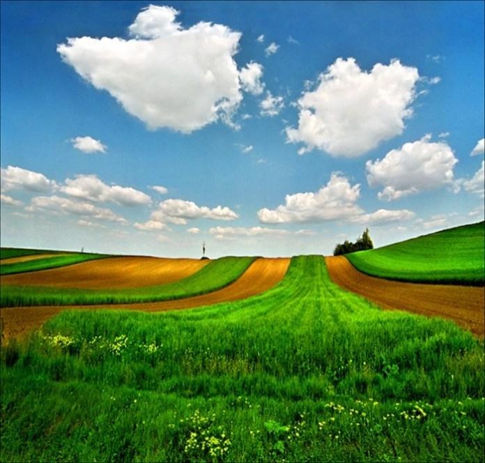beautiful-landscape-photos- (8)