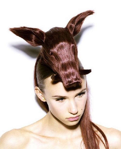 crazy-animal-hairstyle- (4)