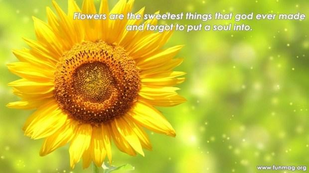 best-nature-quotes- (4)
