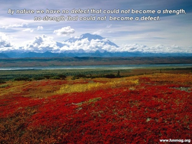 best-nature-quotes- (9)