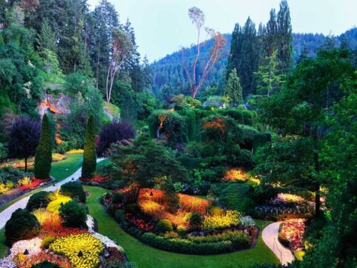 beautiful-nature-scenery-12