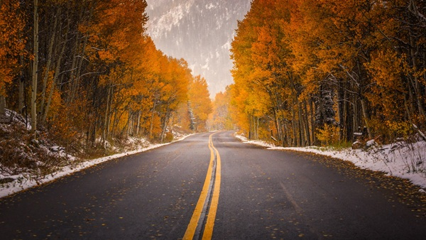 beautiful-roads-of-the-world- (22)