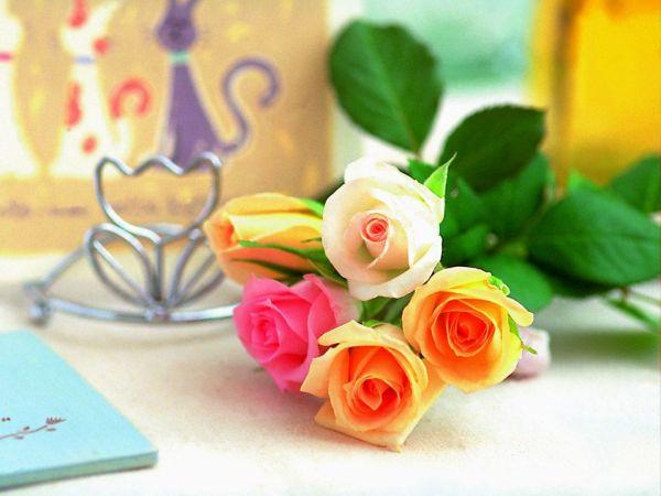 beautiful-roses-wallpapers-20-photos- (16)
