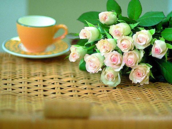 beautiful-roses-wallpapers-20-photos- (20)
