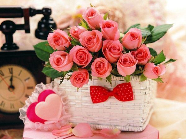 beautiful-roses-wallpapers-20-photos- (8)
