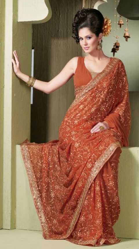 embroidered-fancy-saree-21-photos- (6)