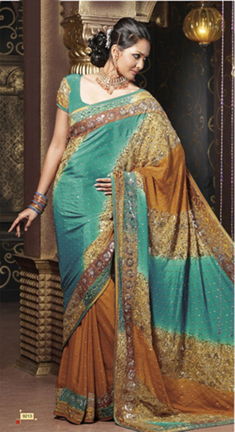 embroidered-fancy-saree-21-photos- (14)