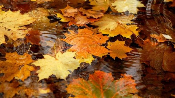 beautiful-autumn-wallpapers- (9)