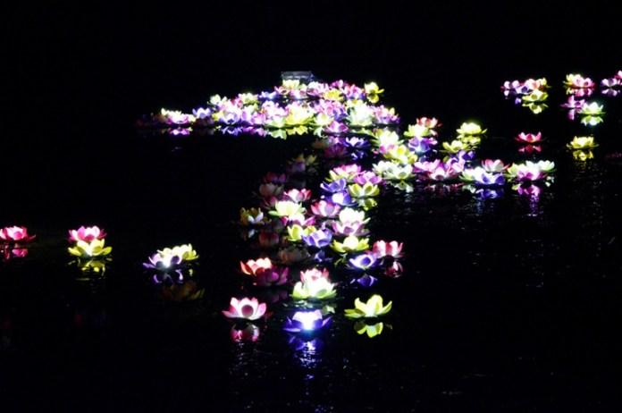 festival-of-light- (15)