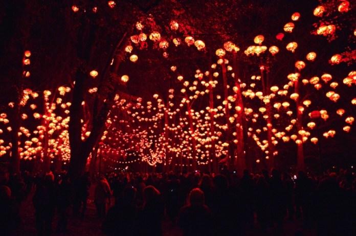 festival-of-light- (6)