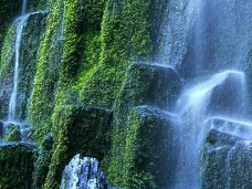 picture-of-waterfalls- (14)