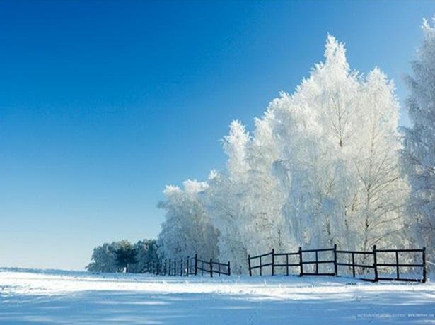 25-winter-photos- (7)