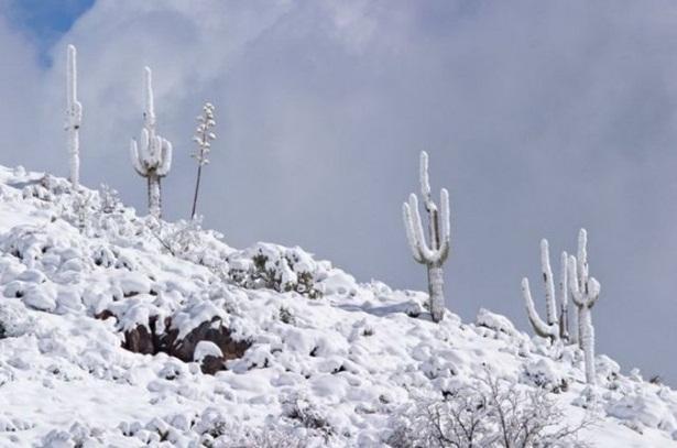 25-winter-photos- (24)