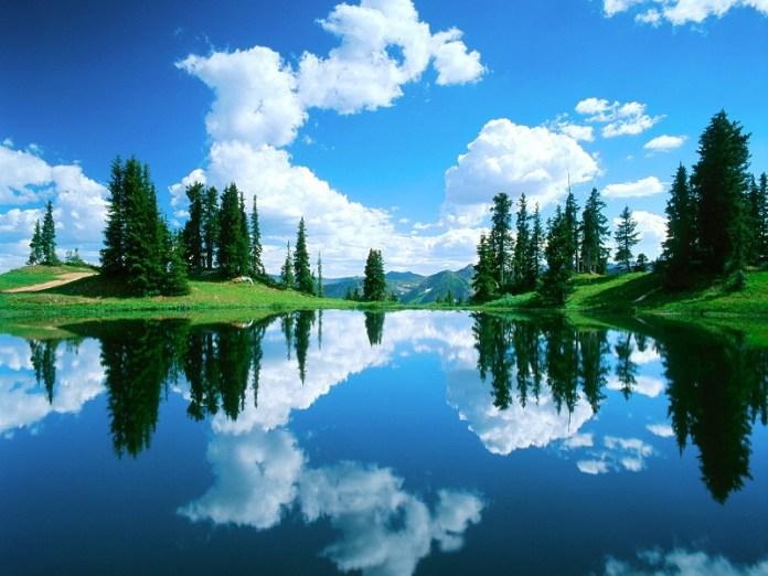 nature-reflections-photos- (1)