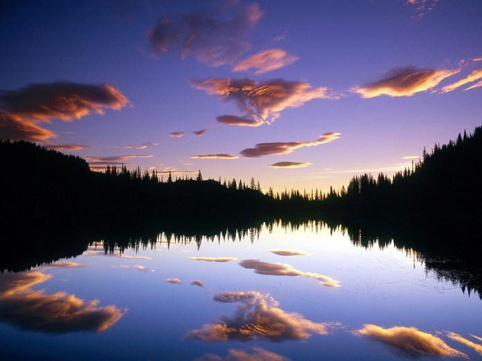 nature-reflections-photos- (4)