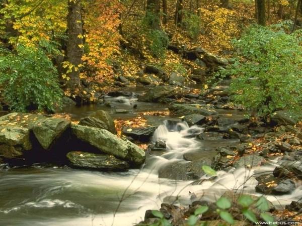 beautiful-nature-wallpapers-15-photos- (10)