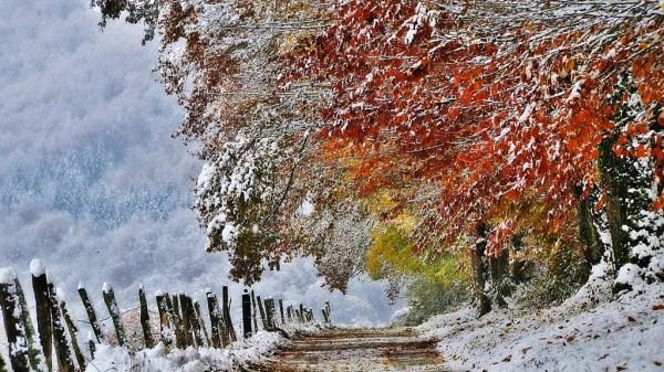 beautiful-nature-wallpapers-15-photos- (4)