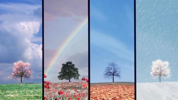 beautiful-nature-wallpapers-15-photos- (6)
