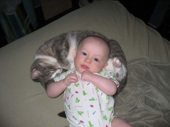 babies-and-cats- (25)