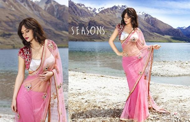 designer-saree-collection-2014-by-seasons- (17)