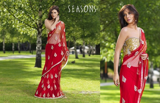 designer-saree-collection-2014-by-seasons- (6)