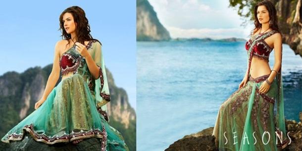 designer-saree-collection-2014-by-seasons- (9)