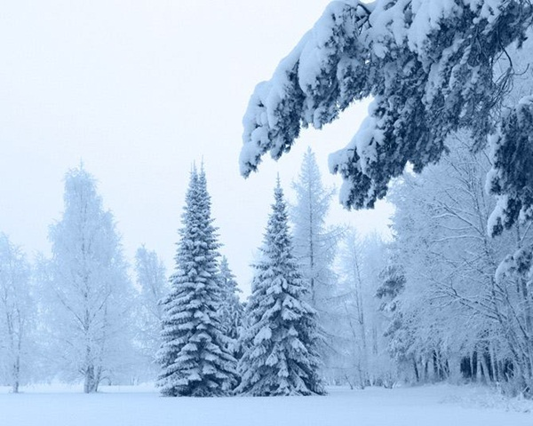 26-winter-photos- (1)