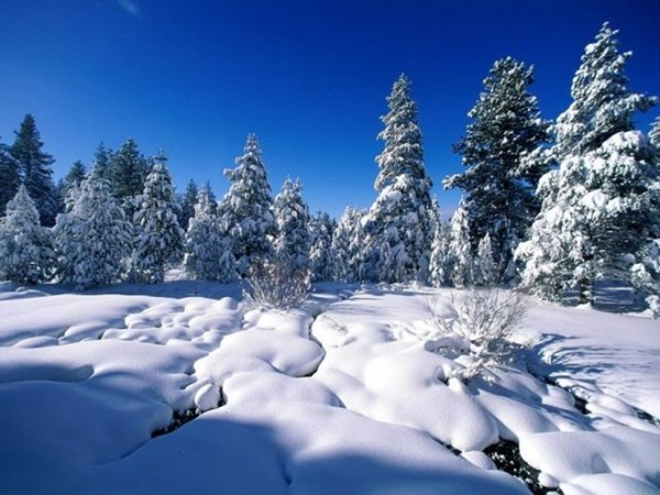 26-winter-photos- (14)