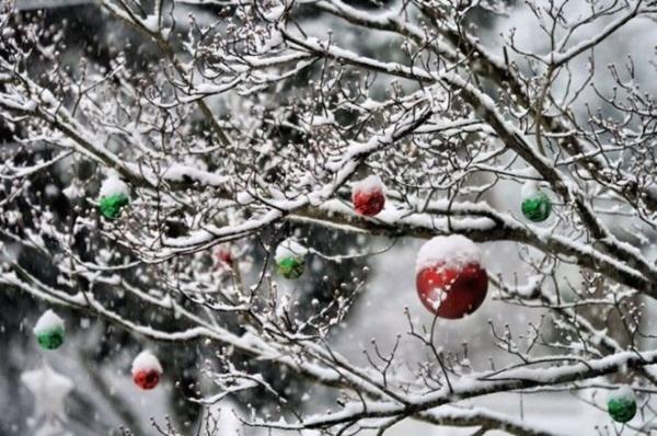 26-winter-photos- (21)