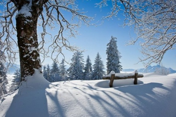 26-winter-photos- (26)