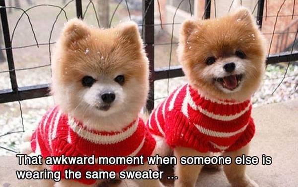 funny-awkward-situation- (10)